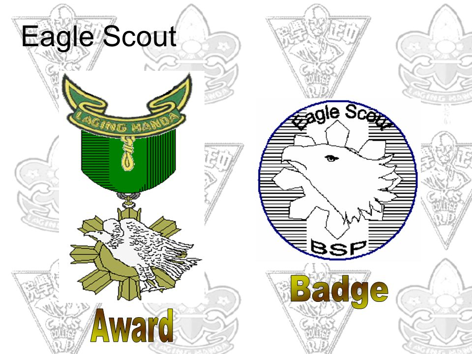Eagle Scout Badge Award