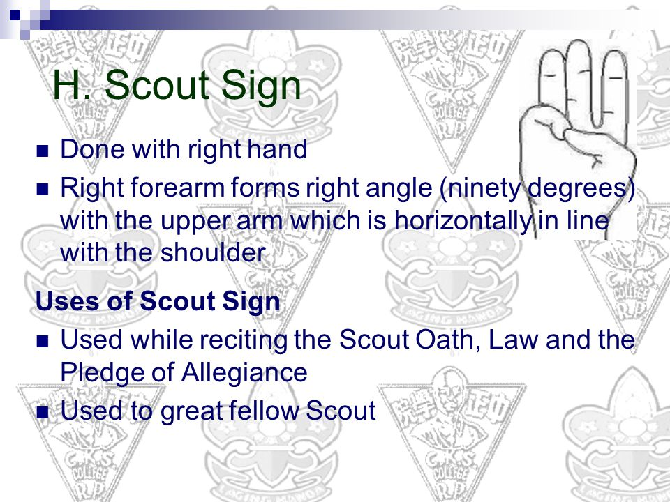 H. Scout Sign Done with right hand