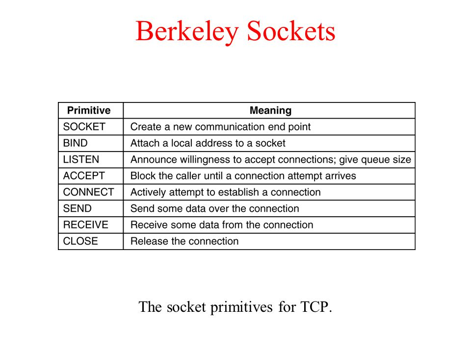 The socket primitives for TCP.