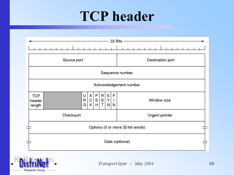 TCP header Transport layer -- May 2004