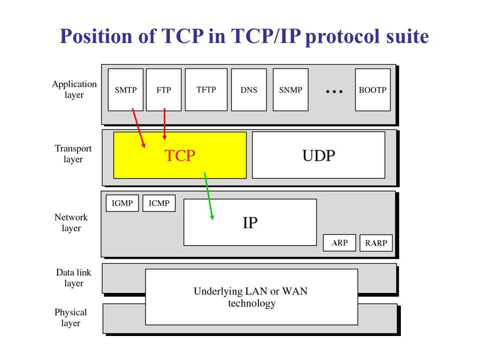 Position of TCP in TCP/IP protocol suite