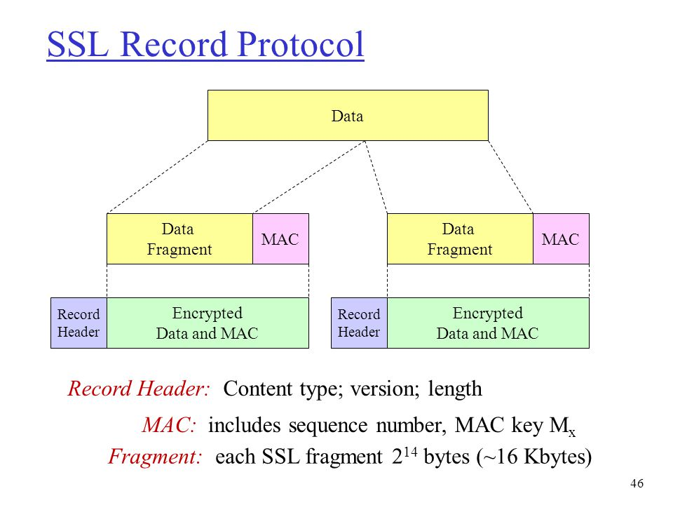 SSL Record Protocol Record Header: Content type; version; length