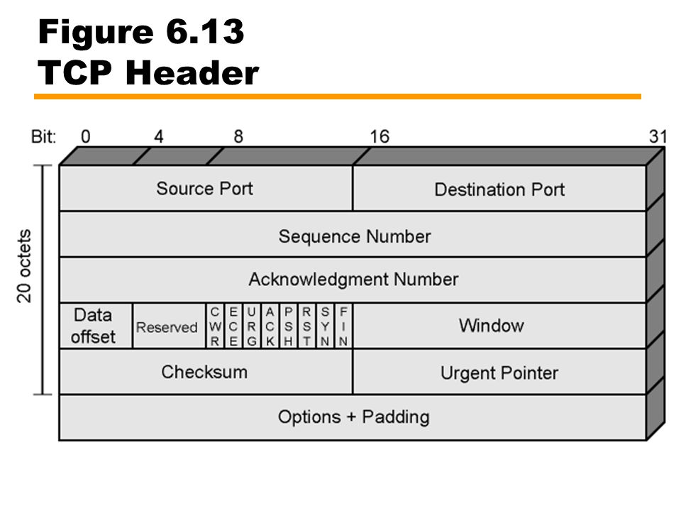 Figure 6.13 TCP Header