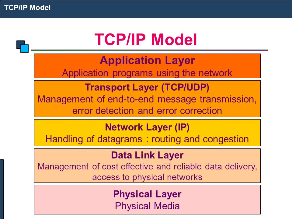 Transport Layer (TCP/UDP)