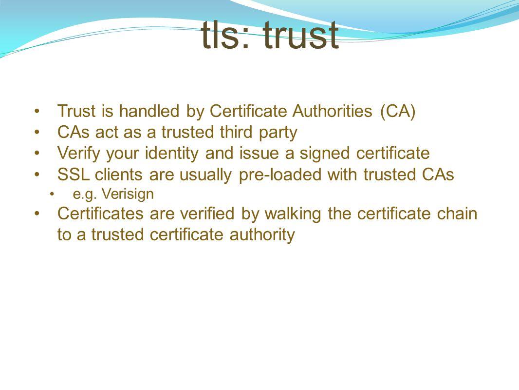 tls: trust Trust is handled by Certificate Authorities (CA)