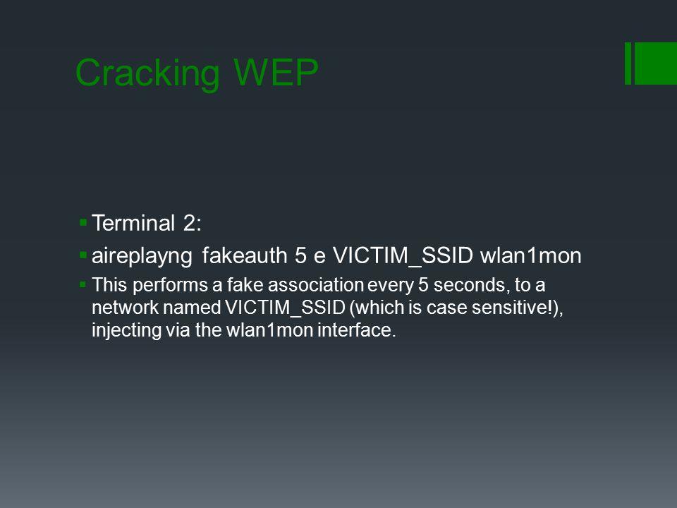 Cracking WEP Terminal 2: