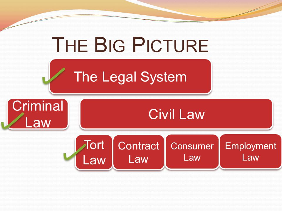 The Big Picture The Legal System Criminal Law Civil Law Tort Law