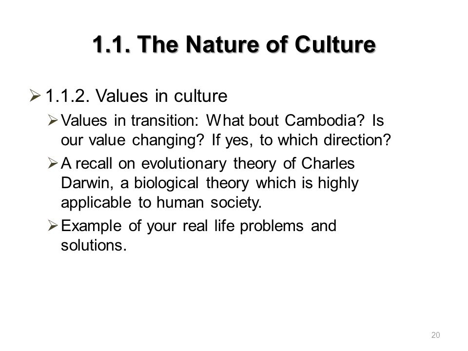 1.1. The Nature of Culture 1.1.2. Values in culture