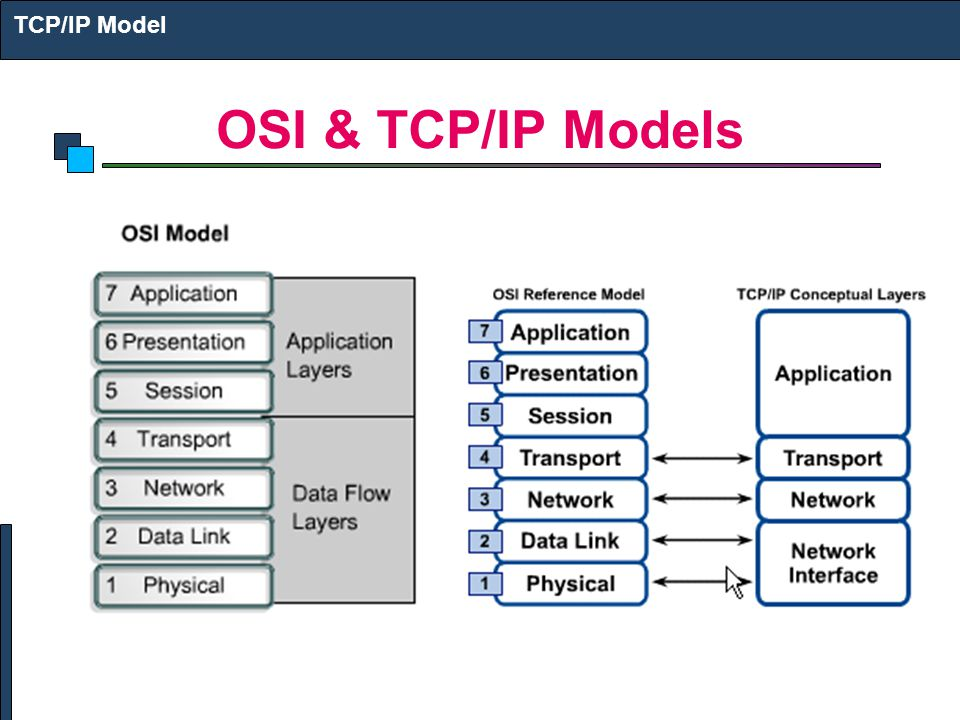 TCP/IP Model OSI & TCP/IP Models