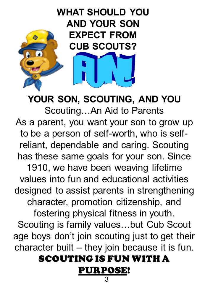 FUN! WHAT SHOULD YOU AND YOUR SON EXPECT FROM CUB SCOUTS