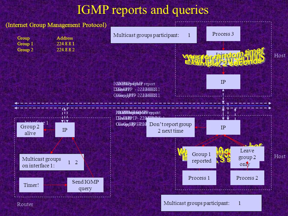 IGMP reports and queries