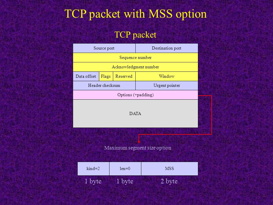 TCP packet with MSS option