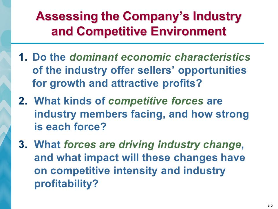Assessing the Company's Industry and Competitive Environment