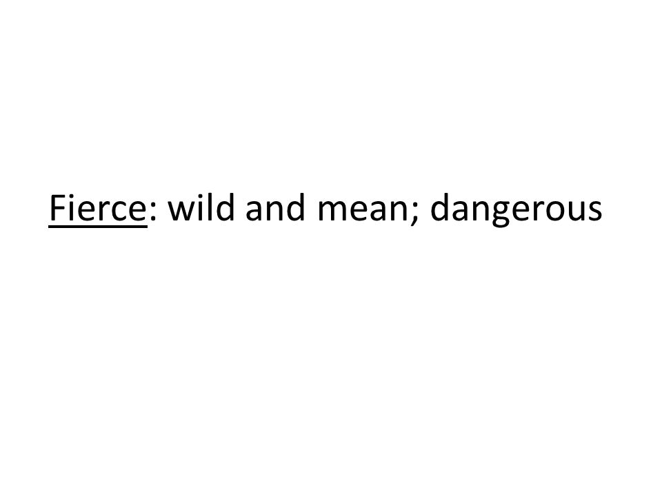 Fierce: wild and mean; dangerous