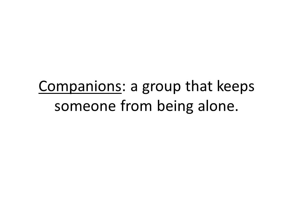 Companions: a group that keeps someone from being alone.