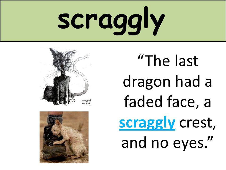 The last dragon had a faded face, a scraggly crest, and no eyes.