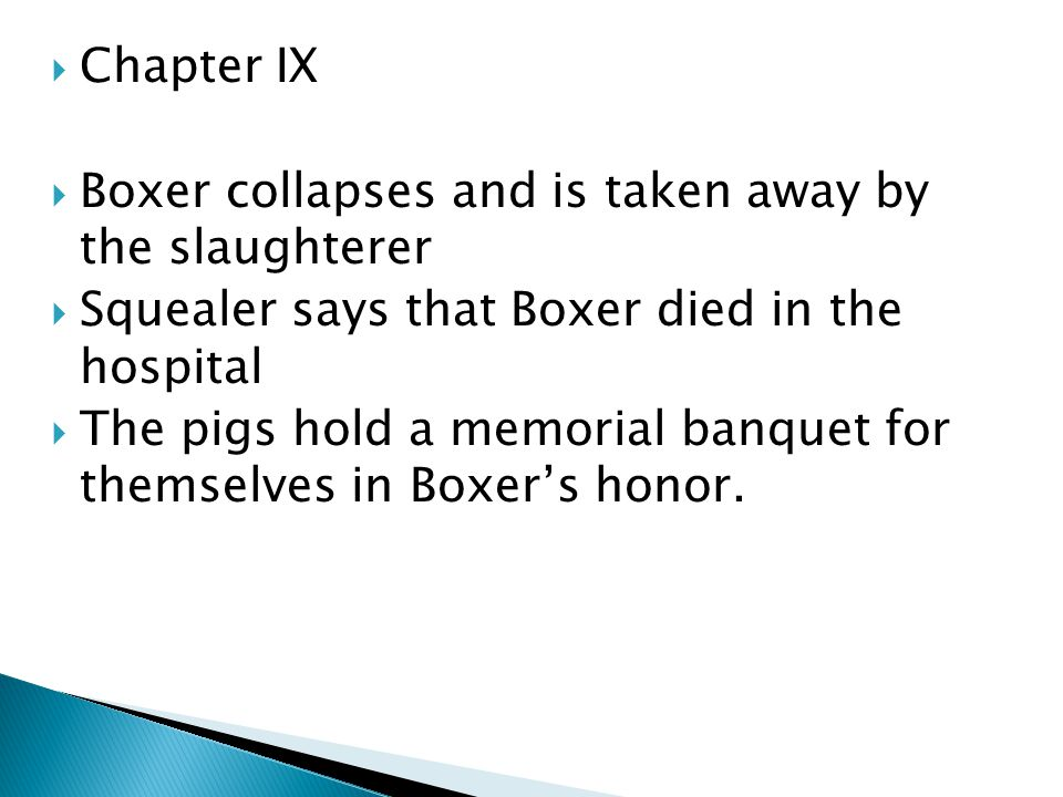Chapter IX Boxer collapses and is taken away by the slaughterer. Squealer says that Boxer died in the hospital.