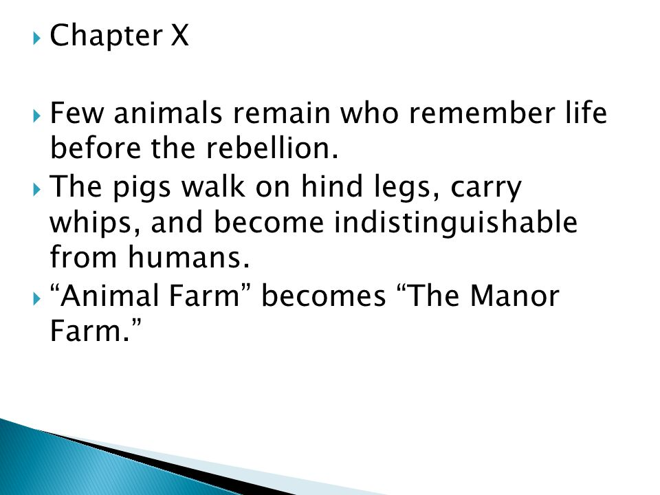 Chapter X Few animals remain who remember life before the rebellion.