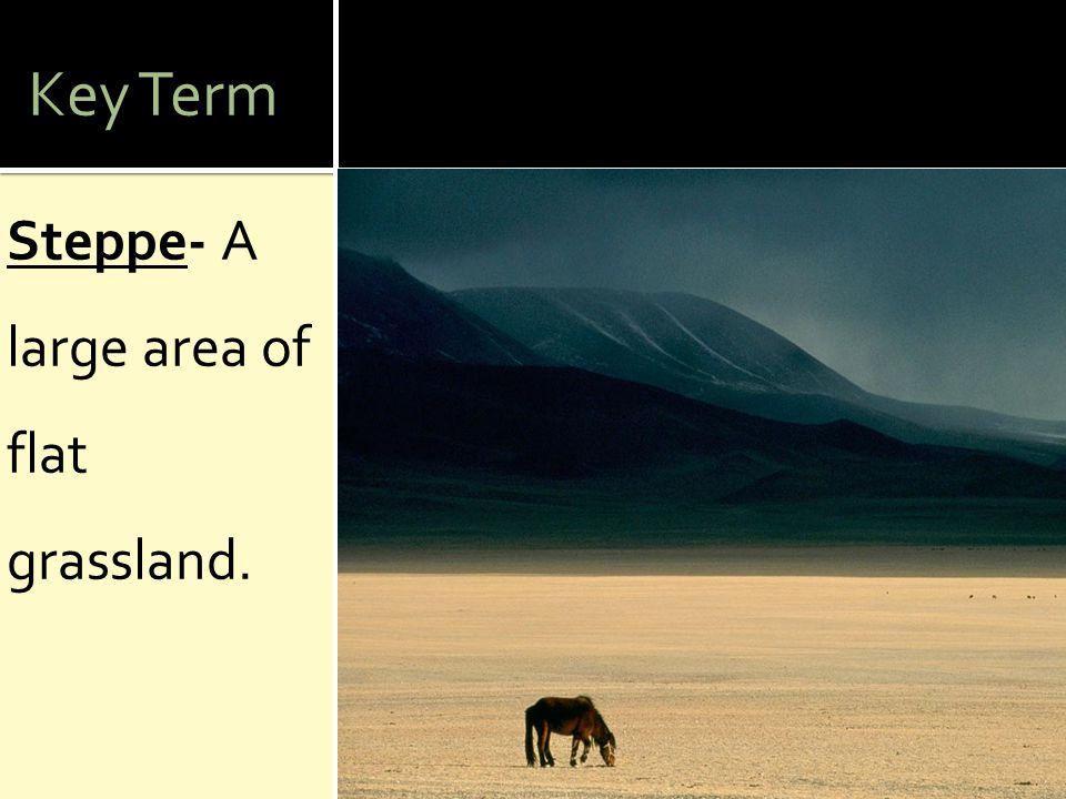 Key Term Steppe- A large area of flat grassland.