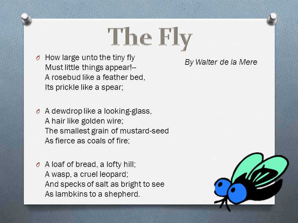 The Fly How large unto the tiny fly Must little things appear!-- A rosebud like a feather bed, Its prickle like a spear;
