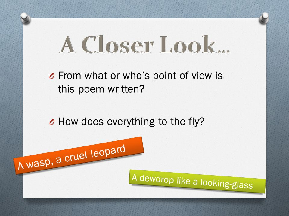 A Closer Look… From what or who's point of view is this poem written