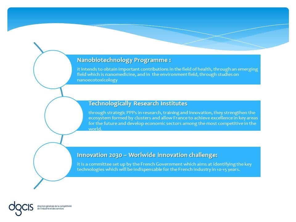 Nanobiotechnology Programme :