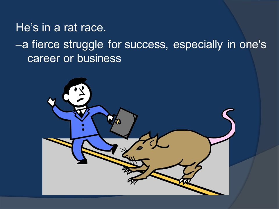 He's in a rat race. –a fierce struggle for success, especially in one s career or business