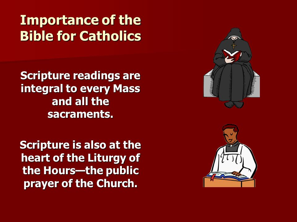 Importance of the Bible for Catholics