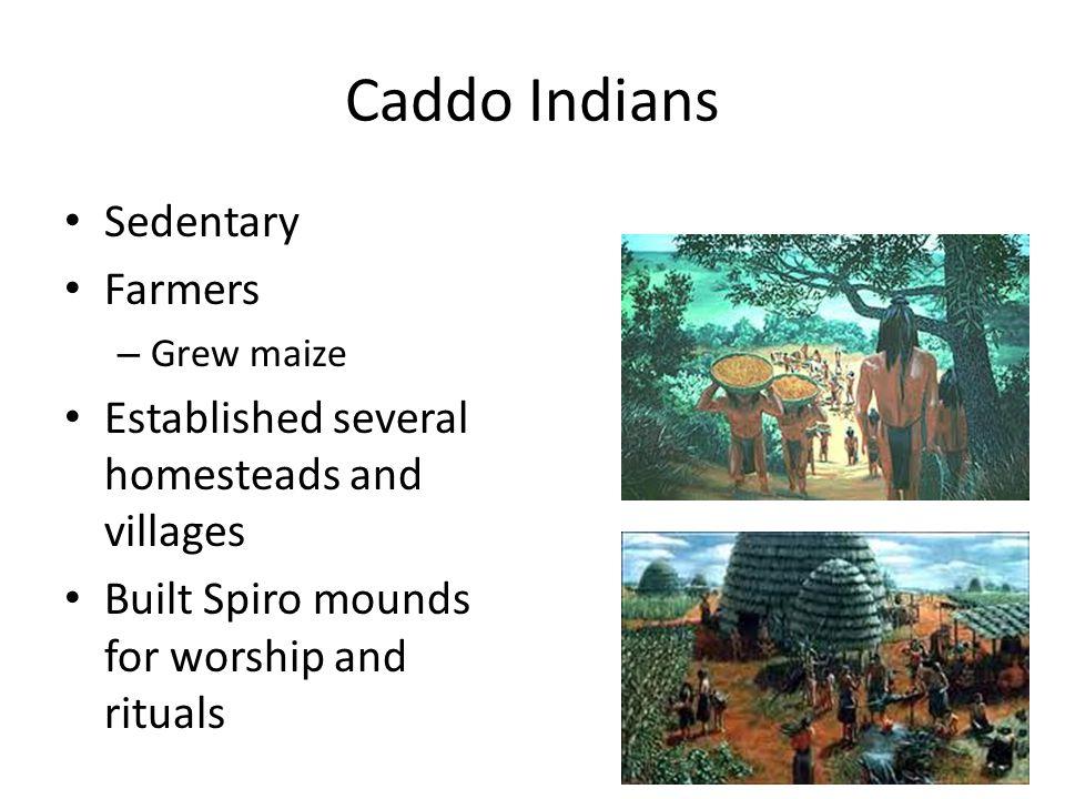 Caddo Indians Sedentary Farmers