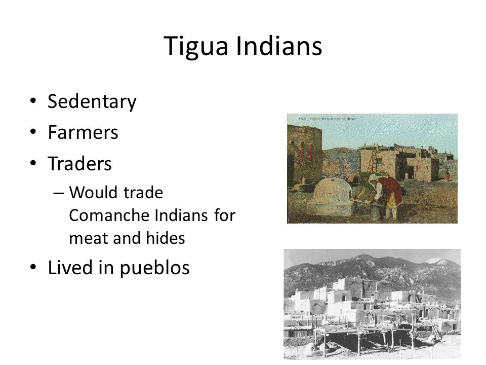 Tigua Indians Sedentary Farmers Traders Lived in pueblos