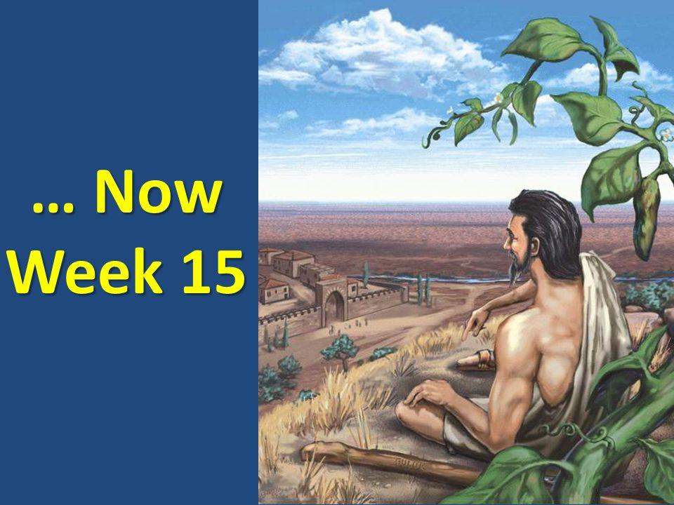 … Now Week 15