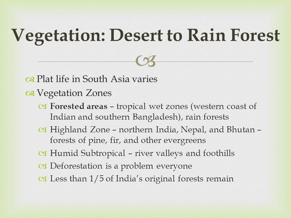 Vegetation: Desert to Rain Forest