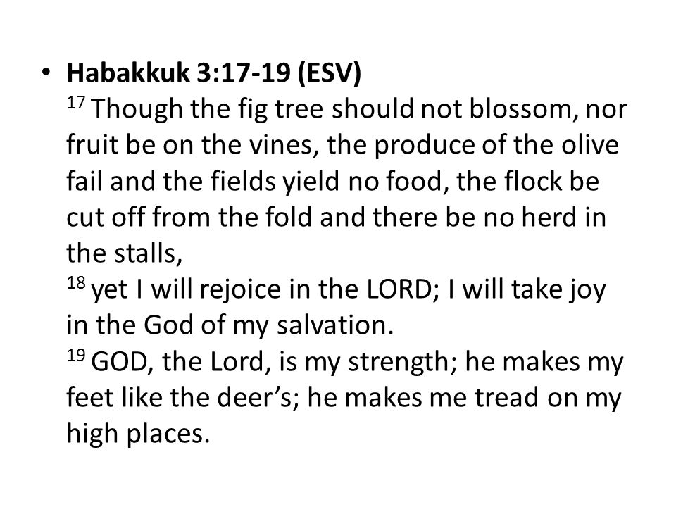 Habakkuk 3:17-19 (ESV) 17 Though the fig tree should not blossom, nor fruit be on the vines, the produce of the olive fail and the fields yield no food, the flock be cut off from the fold and there be no herd in the stalls, 18 yet I will rejoice in the LORD; I will take joy in the God of my salvation.