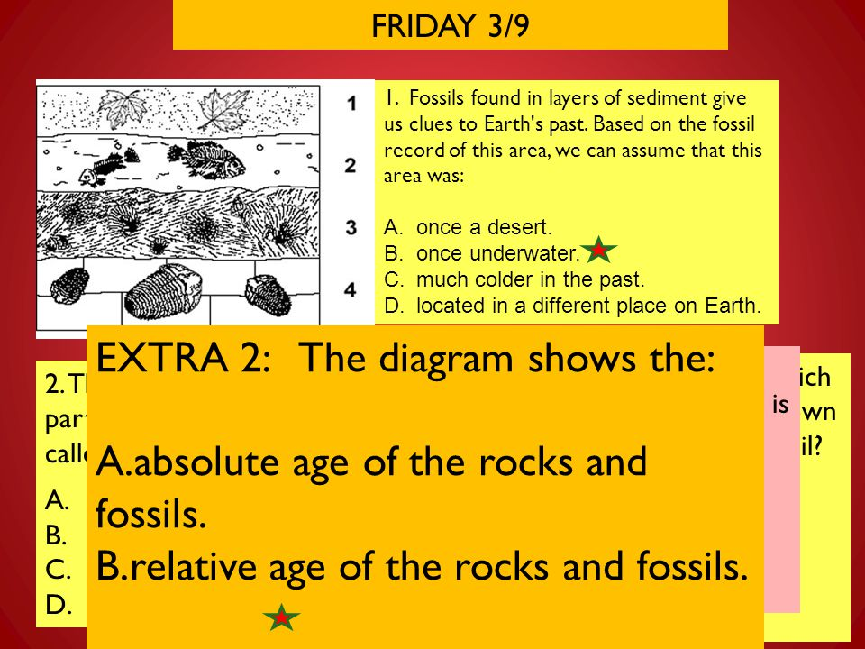 EXTRA 2: The diagram shows the: absolute age of the rocks and fossils.