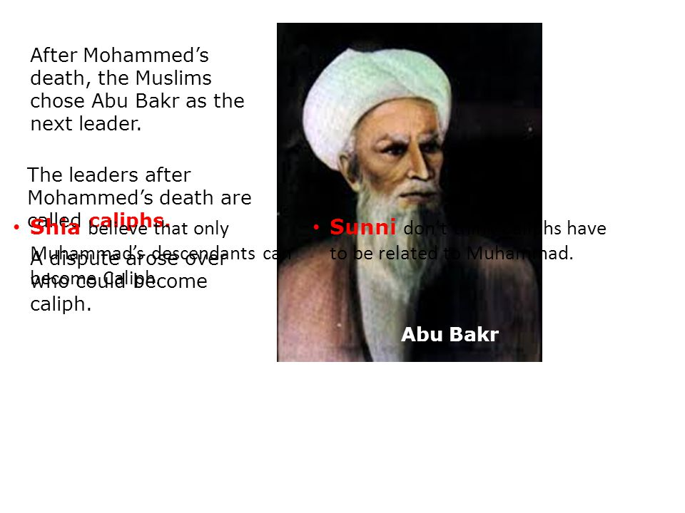 Shia believe that only Muhammad's descendants can become Caliph.