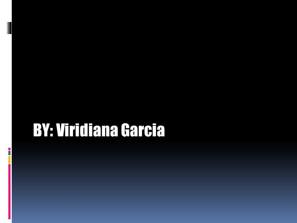 BY: Viridiana Garcia