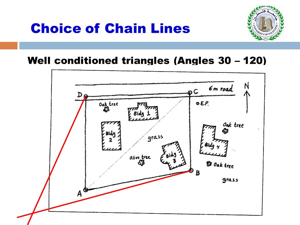Choice of Chain Lines Well conditioned triangles (Angles 30 – 120)