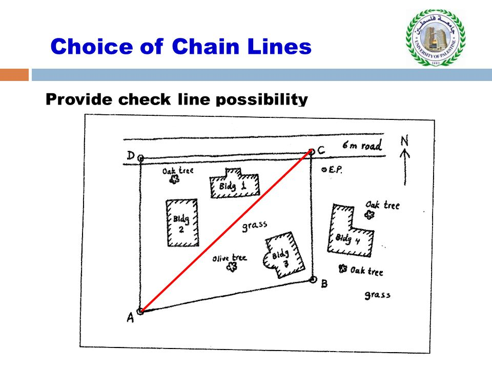 Choice of Chain Lines Provide check line possibility