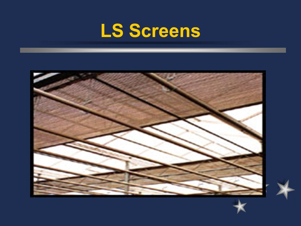 LS Screens