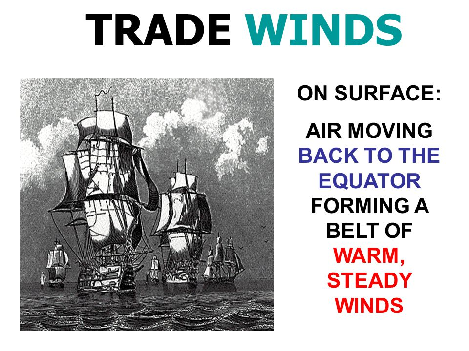 AIR MOVING BACK TO THE EQUATOR FORMING A BELT OF WARM, STEADY WINDS