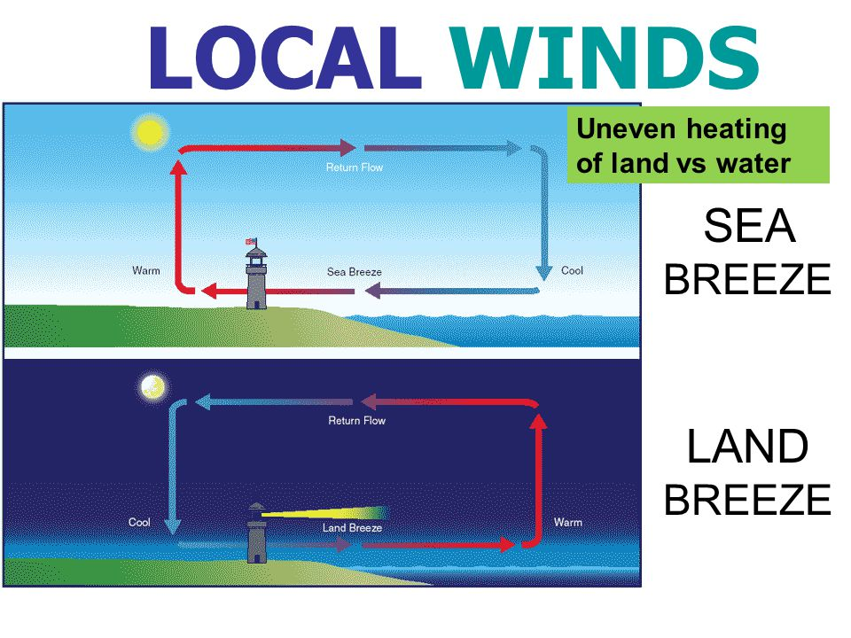LOCAL WINDS Uneven heating of land vs water SEA BREEZE LAND BREEZE