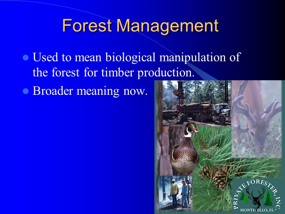 Forest Management Used to mean biological manipulation of the forest for timber production.