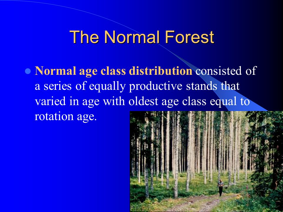 The Normal Forest