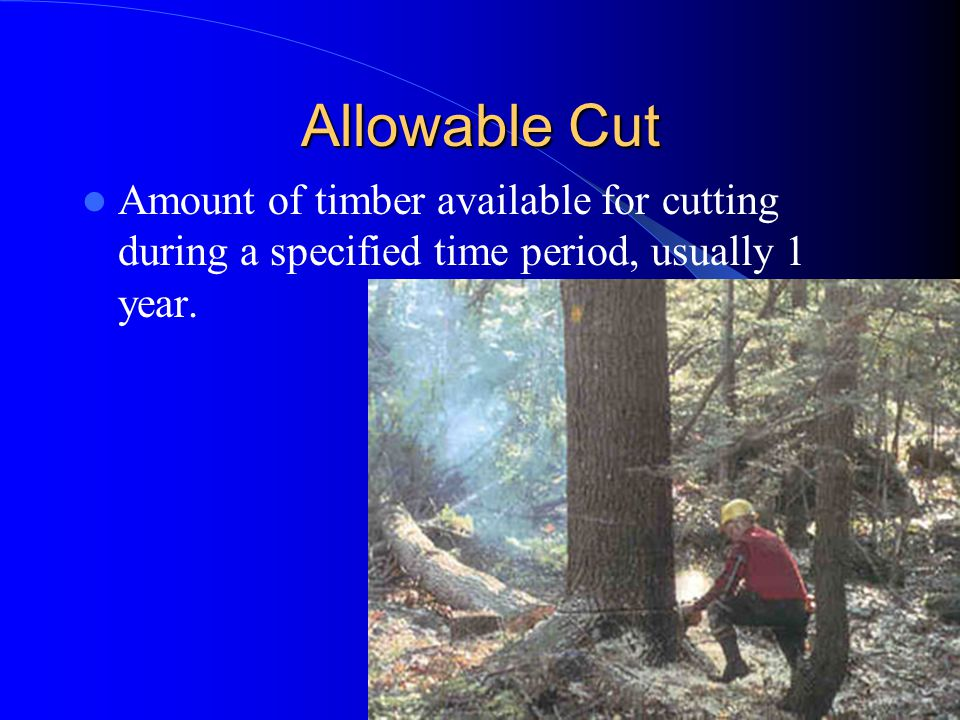 Allowable Cut Amount of timber available for cutting during a specified time period, usually 1 year.