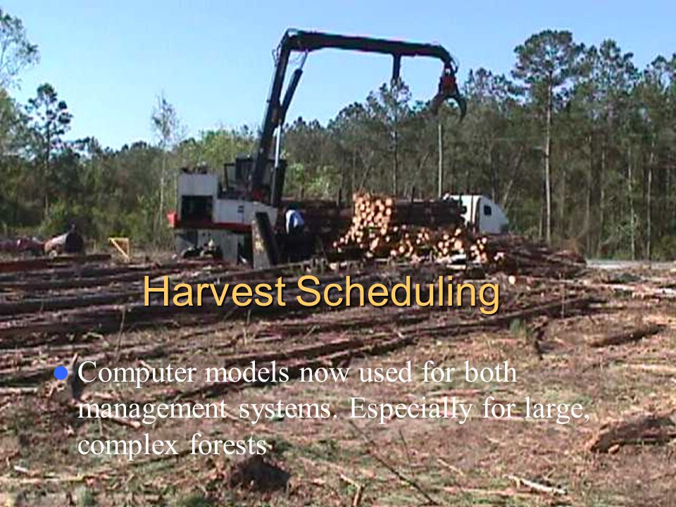 Harvest Scheduling Computer models now used for both management systems.