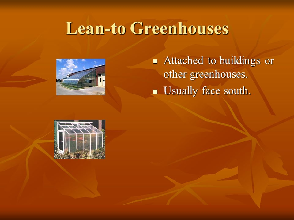 Lean-to Greenhouses Attached to buildings or other greenhouses.
