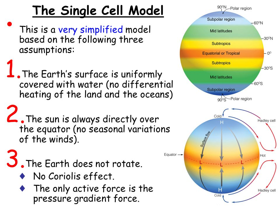 The Single Cell Model This is a very simplified model based on the following three assumptions: