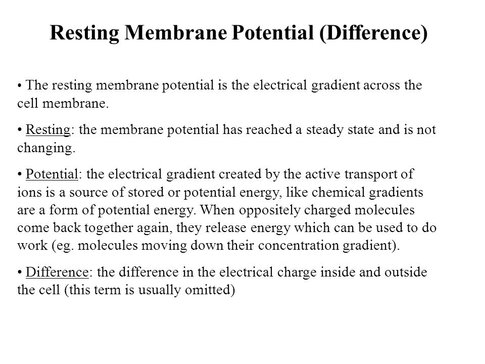 Resting Membrane Potential (Difference)