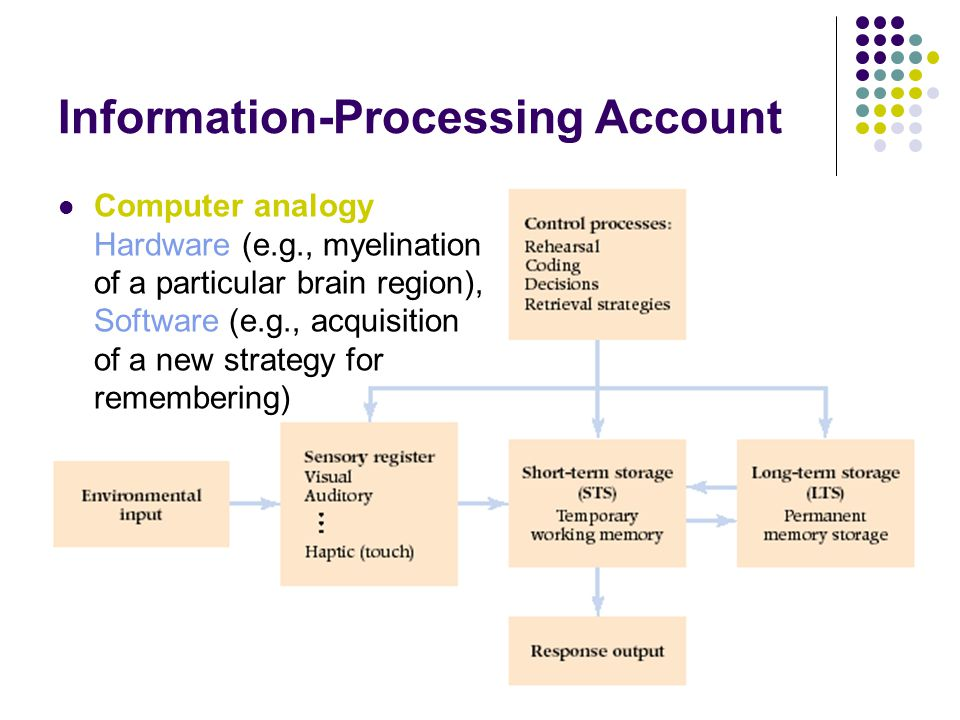 Information-Processing Account