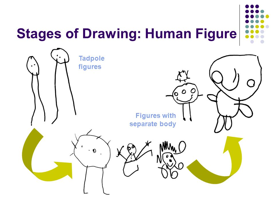 Stages of Drawing: Human Figure
